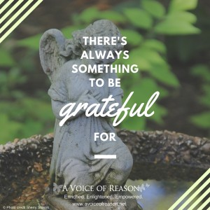 Quote-Something to be grateful for
