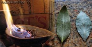 Burn-A-Bay-Leaf-In-Your-House.-The-Reason-Youll-Be-Amazed