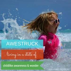 awestruck- A Voice Of Reason